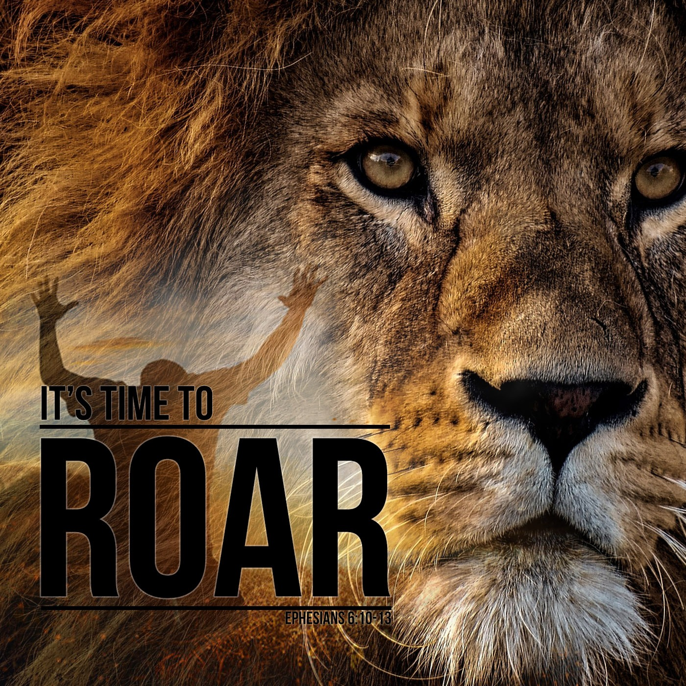 Its Time to Roar - KBOE Radio Series with Mike Sereg